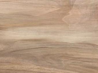 Aquarelle - Wood