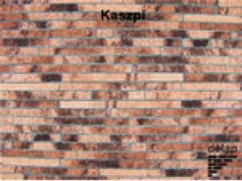 Delap Kaszpi